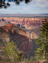 Grand canyon from the north rim with view of flat plateau and mountain in the distance Royalty Free Stock Images