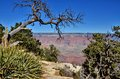 Grand canyon a spectacular view of the photo taken november Stock Images