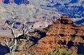 Grand canyon a spectacular view of the photo taken november Royalty Free Stock Photos
