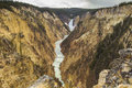Grand Canyon of Yellowstone Royalty Free Stock Photo