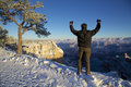 Grand- Canyonwinter-Lob Stockfotos