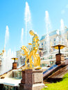 Grand Cascade Fountains At Peterhof Palace, Russ Royalty Free Stock Photo