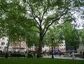 Grand dos de Leicester, Londres Photos libres de droits