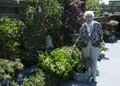 Grand-maman dans le jardin Photos stock