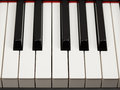 Grand piano ebony and ivory keys Royalty Free Stock Photo