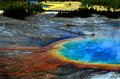 Grand Prismatic Pool at Yellowstone National Park Royalty Free Stock Photo