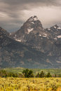 Grand teton national park jackson wyoming Stock Photo