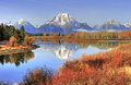 Grand Teton ranges backdrop to fall colors along Snake River, Gr Royalty Free Stock Photo