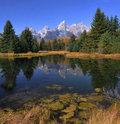 Grand Teton Reflections Stock Image