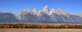 Grand Tetons panorama Royalty Free Stock Photo