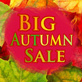 Grande vente d automne Photo stock