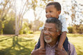 Grandfather Carries Grandson On Shoulders During Walk In Park Royalty Free Stock Photo