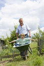 Grandfather giving grandson ride in wheelbarrow community garden Stock Photo