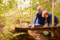 Grandfather playing with grandson on a bridge in a forest Royalty Free Stock Photo