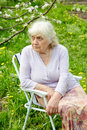 The grandmother in  garden under a blossoming apple-tree Royalty Free Stock Photo