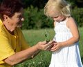 Grandmother and granddaughter holding a plant together in hands Royalty Free Stock Photography