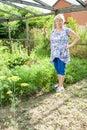 Grandmother in your garden working Stock Image