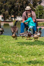 Grandpa helps happy little girl feed ducks at lake man cute the on a lawn a man wears a fedora and sunglasses and has a beard and Stock Photo