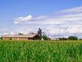 Granero viejo en el medio de un campo verde Fotos de archivo libres de regalías