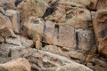 Granite rock eroded and cracked formation background Stock Images