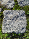 Granite rock pavement detail stone background with small portions of green grass vegetation Stock Photo