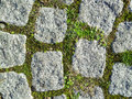 Granite stone pavement background with small green grass vegetation Stock Images