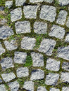 Granite stone pavement background with small portions of green grass vegetation Stock Photo