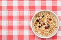 Granola de fruit Image stock