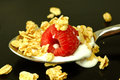 Granola on Spoon Royalty Free Stock Photo