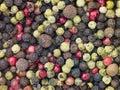Granos mezclados de la pimienta Imagen de archivo