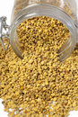 Granulated bee pollen Stock Photos