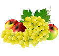 Grape with apples Stock Photography