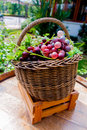 Grape in the basket fresh red and green Royalty Free Stock Image