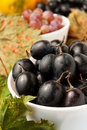 Grape in a bowl Stock Photography