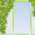 Grape door framework Royalty Free Stock Photos