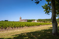Grape field and old church behind landscape in bordeaux region the typical france Royalty Free Stock Images