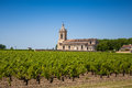 Grape field and old church behind the typical landscape in bord bordeaux region france Royalty Free Stock Photography