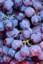 Grape in fresh beautiful purple Royalty Free Stock Images