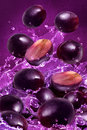 Grape fruits and splash water Stock Photos