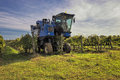 The grape harvest combine , Grape harvesting machine, combine-harvester Tuscany, Italy Royalty Free Stock Photo