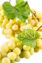 Grape isolated on white background Royalty Free Stock Photos