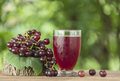 Grape juice in a glass on the table Royalty Free Stock Image