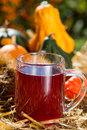 Grape juice with noble chestnuts and pumpkins Royalty Free Stock Photo