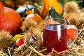 Grape juice with noble chestnuts and pumpkins Stock Images