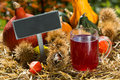 Grape juice with noble chestnuts and pumpkins Royalty Free Stock Photography