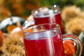 Grape juice with noble chestnuts and pumpkins Royalty Free Stock Photos