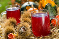 Grape juice with noble chestnuts and pumpkins Stock Photos