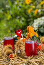 Grape juice with noble chestnuts and pumpkins Stock Photo