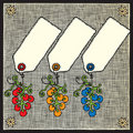 Grape labels woodcut Stock Images