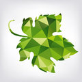 Grape leaf in polygon style green Royalty Free Stock Photos